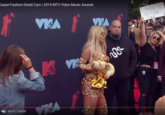 2019 VMAs Fashions